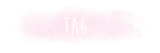 TAG – Santa Claus is coming to town !
